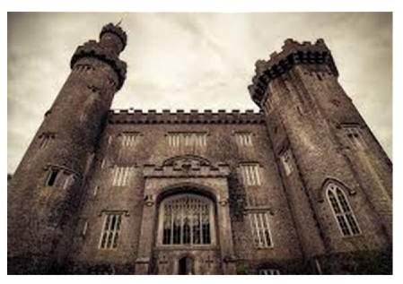 Castle Forensics